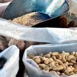 Samye poleznye bobovye zlakovye i orehi