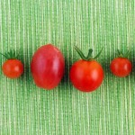 Pomidory dlja pohudenija