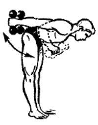gantelnaja gimnastika 10