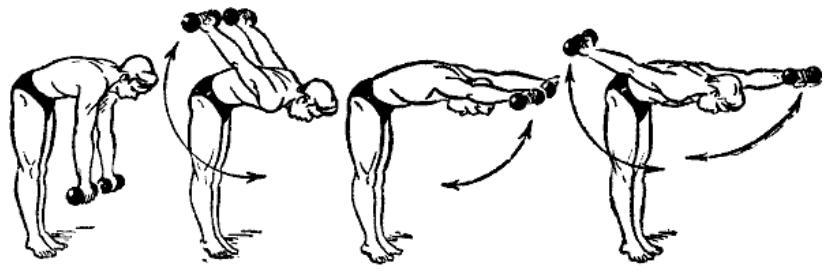 gantelnaja gimnastika 15