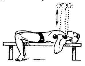 gantelnaja gimnastika 16