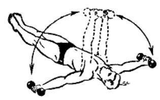 gantelnaja gimnastika 17