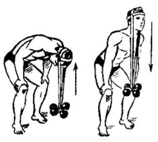 gantelnaja gimnastika 19