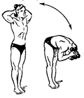 gantelnaja gimnastika 20