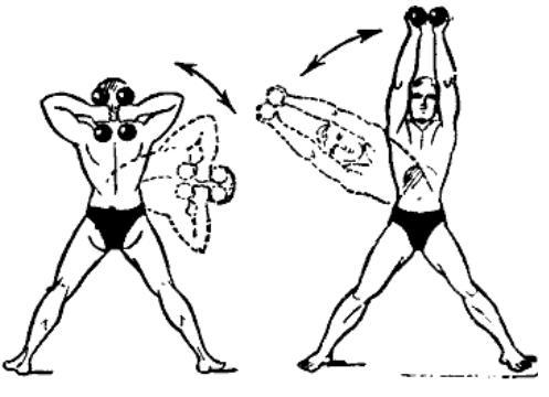 gantelnaja gimnastika 23