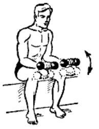 gantelnaja gimnastika 3