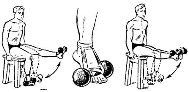 gantelnaja gimnastika 30