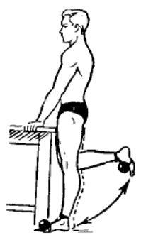 gantelnaja gimnastika 31