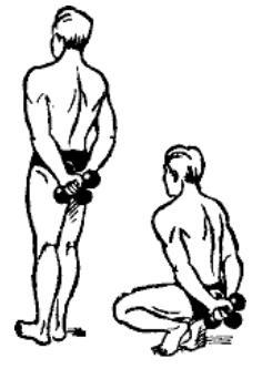 gantelnaja gimnastika 35