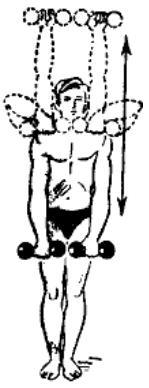 gantelnaja gimnastika 8